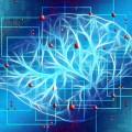 Künstliche Intelligenz Gehirn Verbindungen