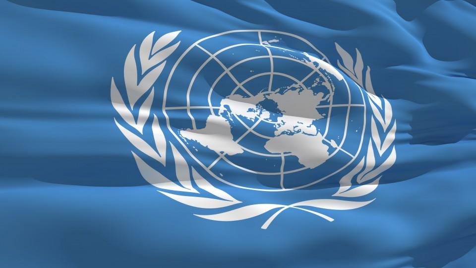 Panthermedia Flagge United Nations